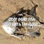 "Picture of dead fish with the quote: ""Only dead fish go with the flow"""